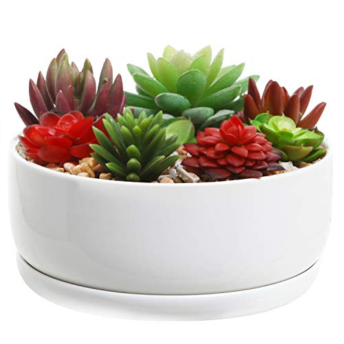 MyGift 6-Inch Decorative White Ceramic Succulent Flower Planter Pot with Round Tray