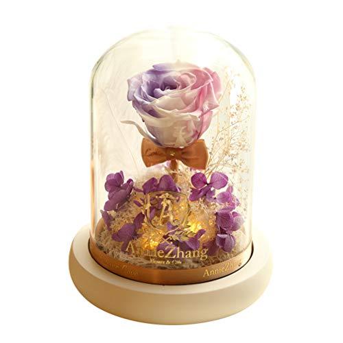 OSALADI Konservierte Rose Blume Kuppel Glas Nachtlicht Getrocknete Blume Licht Dekoration Desktop Ornament Nachtlampe für Office Store Home - Keine Batterie (Verlauf Lila)