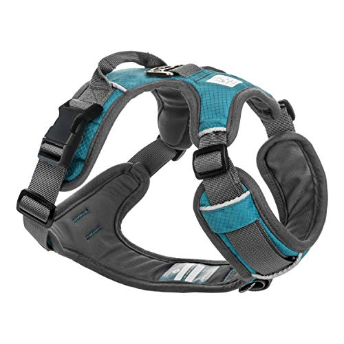 Embark Adventure Dog Harness, Easy On and Off with Front and Back Leash Attachment Points & Control Handle - No Pull Training, Size Adjustable and No Choke (Small - Teal Blue)