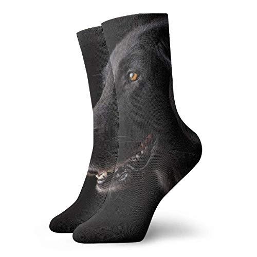 XCNGG Calcetines Animal Perro Mascota Retrato Lindo Perro de pura raza Triste Hombres Mujeres Estándar Calcetines de trabajo de algodón para todas las estaciones