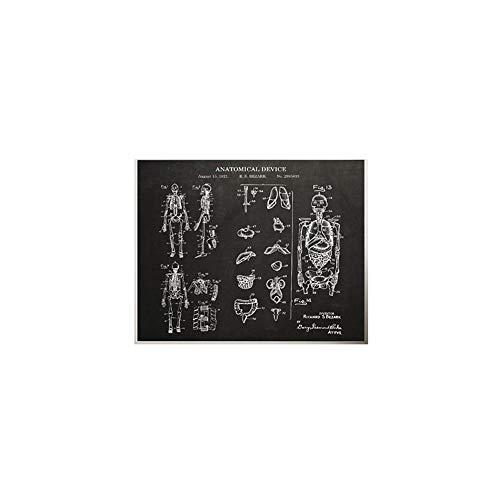 MéDicos AnatomíA De La Lona AnatóMico MéDico Decoracion Marco De La AnatomíA Blanco Humano Blanco Huellas Esqueleto Pared Arte Cuadro Esqueleto Oficina Pintura 40x60cm No Humano Esqueleto