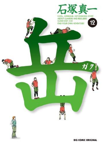 岳 12 (ビッグコミックス)