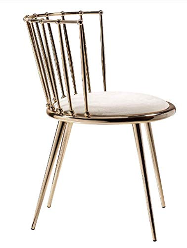 fbg Fashion Nordic Gold Iron Chair Modern Design Dressing Table Chairs Metal Steel Chair Makeup Stool Multicolor Mat