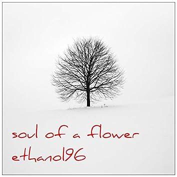 Soul of a Flower