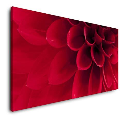Paul Sinus Art rote Dahlie Nahaufnahme 120x 60cm Panorama Leinwand Bild XXL Format Wandbilder Wohnzimmer Wohnung Deko Kunstdrucke