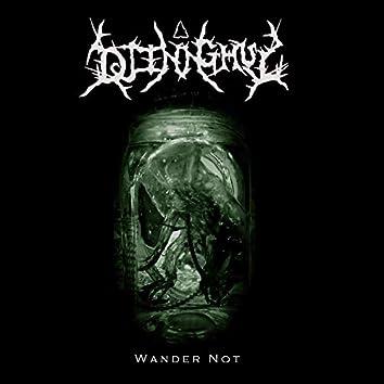 Wander Not