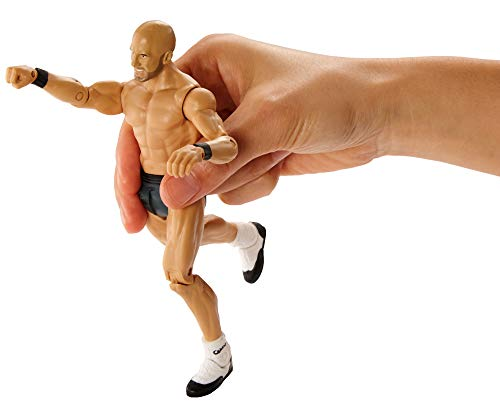 WWE Sound Slammers Cesaro Action Figure