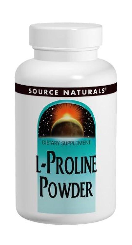 工業化する正確過言L-プロリン 2000mg Powder 4oz