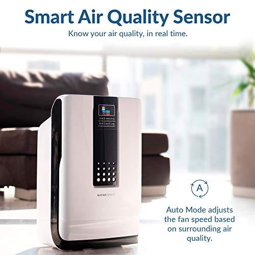 Hathaspace Smart True HEPA Air Purifier, 5-in-1 Large Room Air Cleaner & Deodorizer for Allergies, Pets, Asthma, Smokers, Odors – Eliminates Pet Hair, Allergens, Dust, Pollen, Mold, Smoke, More