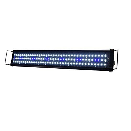 Aquarien Eco Aquarium Aufsatzleuchtung LED Fisch Tank Leuchte Blau + Weiß für Meerwasser Süßwasser (73cm 12W) LED104