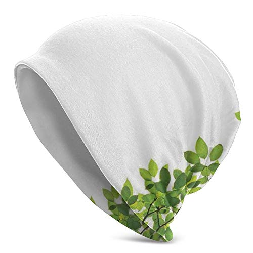 TENJONE Beanie Cap Hat Hedging Skull Hats,Broad Leaves Close-Up Background Garden Organic Foliage Shrubs Cells Plant Image,Knit Hats Soft Slouchy for Unisex Adult