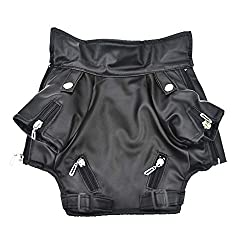 Leather Jacket for your biker dog's halloween costume