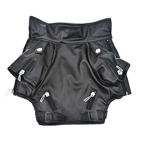 Cool Dog Leather Jacket Coat Winter Warm Dog Pet Clothes for Small Dog (S, Black)