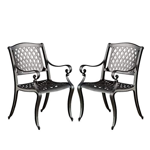 Christopher Knight Home Hallandale Outdoor Cast Aluminum Chairs, 2-Pcs Set, Black Sand