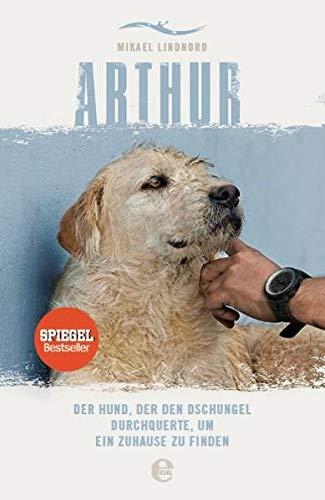 Arthur: Der Hund, der den Dschungel durchquerte, um ein Zuhause zu finden