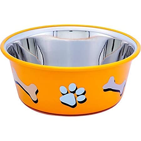 ELTON Paw & Bone Cutie Bowl (Yellow) Dog Bowls Export Quality Inside Stainless Steel Dog Food Bowl Feeder Bowls Pet Bowl for Feeding Dogs Cats and Pets (Large)-2Quart. /1.80 L
