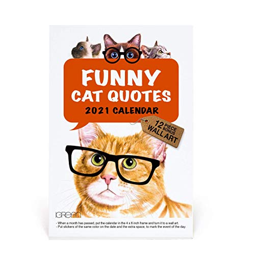 2021 Funny Cat Quote Watercolor Desk Calendar, Christmas Gift and Stocking Stuffer, Cute Animal Art Print for Child's Room Decorating C18