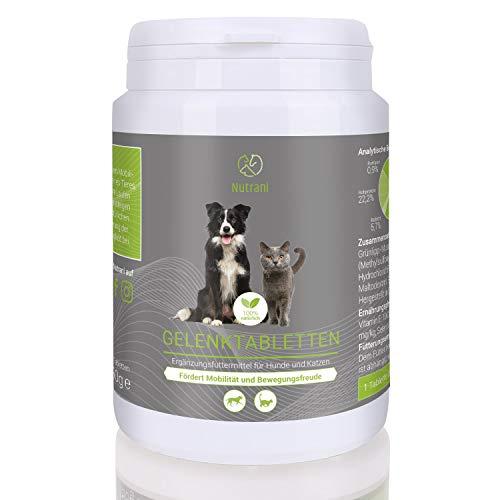 Nutrani Gelenktabletten für Hunde und Katzen | 120 Stück – 100% natürliches Ergänzungsfuttermittel mit Grünlippmuschel, MSM, Teufelskralle, Bierhefe und Ingwer – Fördert Mobilität und Bewegungsfreude
