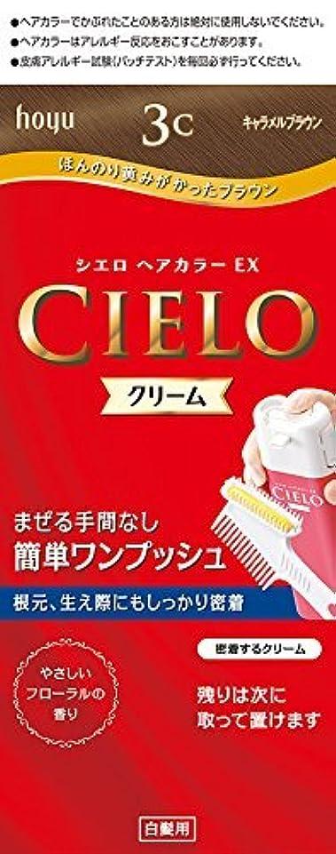 刺激する独特のいちゃつくホーユー シエロ ヘアカラーEX クリーム 3C (キャラメルブラウン)×6個
