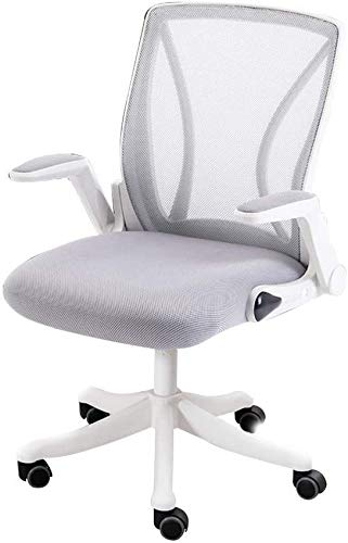 Office Chair Mesh Computer Desk Chair with Lumbar Support High-Back Office Chair Adjustable Height Ergonomic Excutive Council Chair for Dorm Room Study (Color : Gray, Size : White