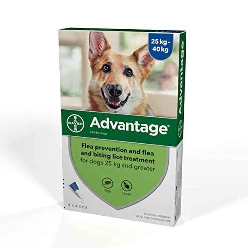 Advantage Spot On Flea Treatment 400 Extra Large Dogs 25-40kg, 4 pipettes