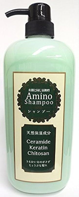 強制的残酷な窒素純ケミファ アミノNシャンプー ダメージヘヤー用 1000ml ノンシリコンシャンプー 弱酸性 フローラルの香り×12点セット (4964653103401)
