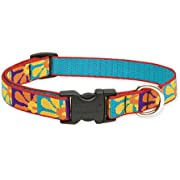 Lupine 3/4-Inch Crazy Daisy Adjustable Dog Collar