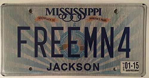 TammieLove - Placa de matrícula de Guitarra Freeman Free Man 4, 15 x 30 cm, diseño de Freedom Independence