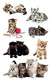 AVERY Zweckform 55971 Aufkleber (für Kinder, Katzen Papiermaterial) 3 Bögen, 21 Sticker