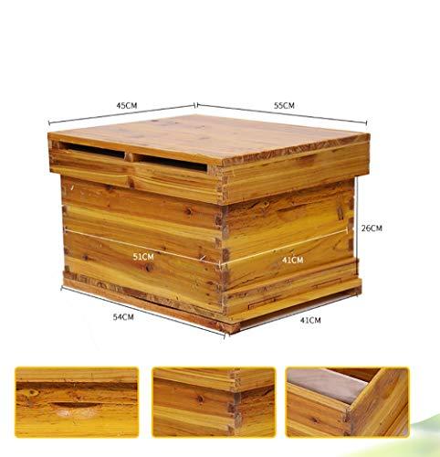 QYLT Colmena de Abeja, Wooden Beehive House, Casa de Abejas de Miel con 10 Marcos de Flujo, Beekeeping Equipment Hive Beehive Supply Beekeeper Tool