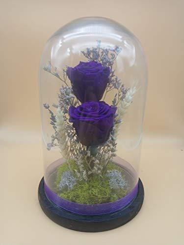 Rosas eternas Azul Gratis TU ENVÍO. Cúpula Bella y Bestia 30 cm de Altura. Rosas preservadas Naturales Azul con Flores...