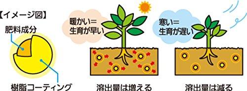 『住友化学園芸 肥料 マイローズ バラの肥料 固形タイプ 1.6kg』の3枚目の画像