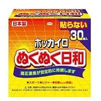 興和 カイロ ホッカイロ ぬくぬく日和 貼らない レギュラー30枚×8箱/ケース販売
