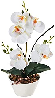"IMIEE Silk Flowers with Pot 31cm in Height Artificial Orchid Phalaenopsis Arrangement Flower Bonsai with Vase for Room Table Centerpieces-H:12"" (White)"