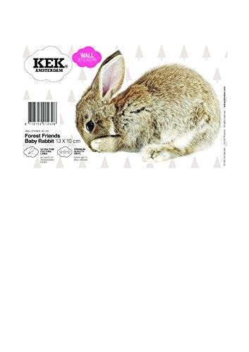 KEK Amsterdam - Baby Rabbit /  Hase - Wandtattoo - Wandsticker - Wandbild  13 x 10 cm