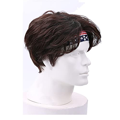 Hairpieces Wigs for Men Stylish Male Wigs Short Wavy Fluffy and Natural Wig,for Daily Party Use Theme Parties (Color : Brown)