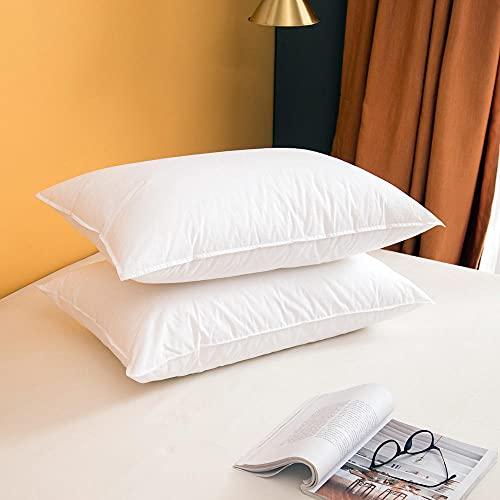 Almohada,Diseño ergonómico para un Mejor Soporte para Dormir en la Cabeza, el Cuello y los Hombros Almohada -51 * 75cm