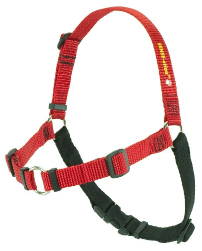 SENSE-ation No-Pull Dog Harness - Red with Black Small by Softouch