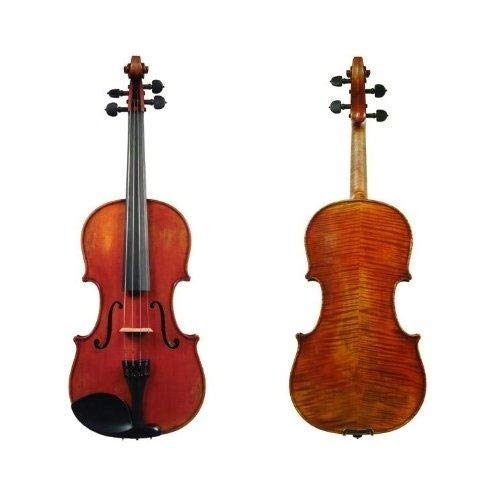 D Z Strad Model 365 Violin 4/4 Full Size with Open Clear Tone with Dominant Strings, Case, Bow, Rosin and Shoulder Rest