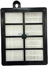 Microsafe® - Filtro HEPA para aspiradora AEG Silent