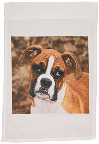 3dRose FL 140295_ 1Wasserspeier Boxer dog-na02pwo0038-piperanne Worcester Garten Flagge, 12von 18