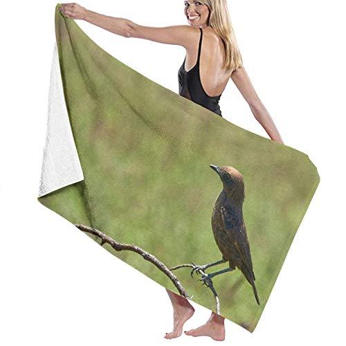Toallas de baño Grandes súper Suaves,Pájaro Azul y marrón en la Rama de un árbol marrón Durante el día,Toallas de Playa Secado rápido suavidad,80x130cm
