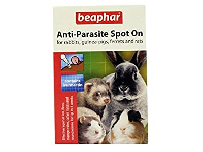 (2 Pack) Beaphar - Anti-Parasite Spot On (Rabbit/Guinea Pig) from Beaphar
