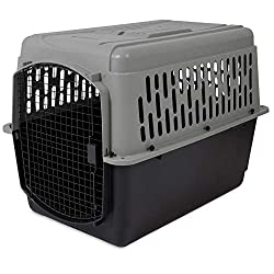 collapsible plastic dog crates