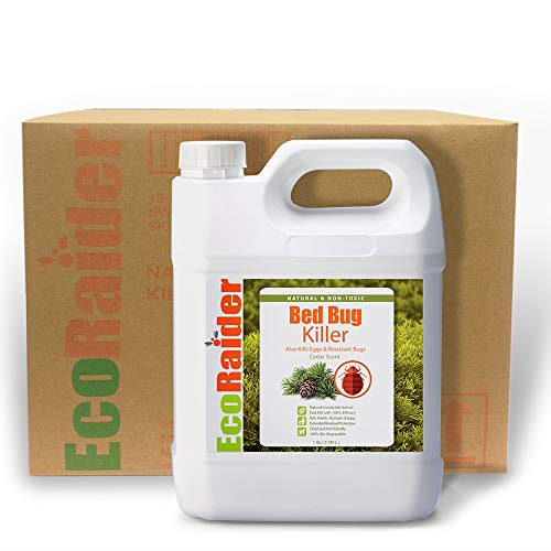 EcoRaider Bed Bug Treatment 1 Gallon (1 CASE 4 JUG OF 1 GAL)