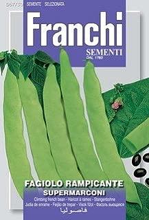 SuperMarconi Romano Pole Beans, Italian Heirloom