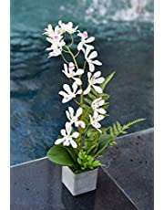 YATAI Artificial Phalaenopsis Orchid Flowers Leaves Branches Artificial Plants Fake Flowers for Home Office Garden Decoration – Silk Flowers Plastic Pot with Moss Grass Arrangement