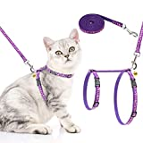 Best cat harness - PAWCHIE Cat Harness and Leash Set - Adjustable Review