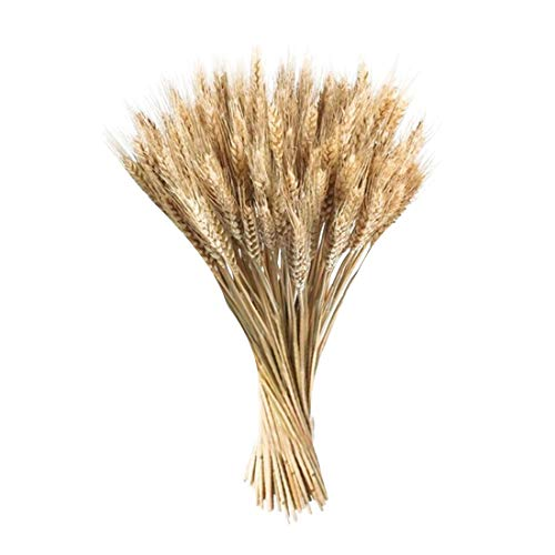 joyliveCY 50 Pieces/set Artificial Autumn Wheat Flower Bouquet Wreath Fake...