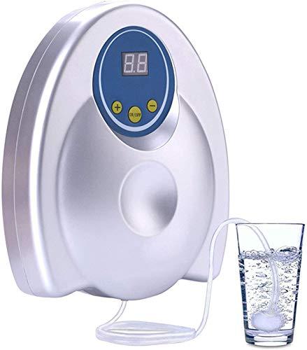 JHLA Purificador De Agua Generador De Ozono 400Mg/H Purificador De Aire Desinfectante De Ozono Ozonizador De Iones De Aniones para Esterilizador De Agua Esterilización De Frutas Verduras